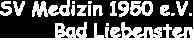 Vereinsbezeichnung_Banner